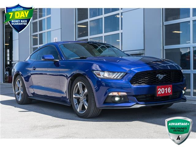 2016 Ford Mustang EcoBoost Premium (Stk: 43705AUX) in Innisfil - Image 1 of 25
