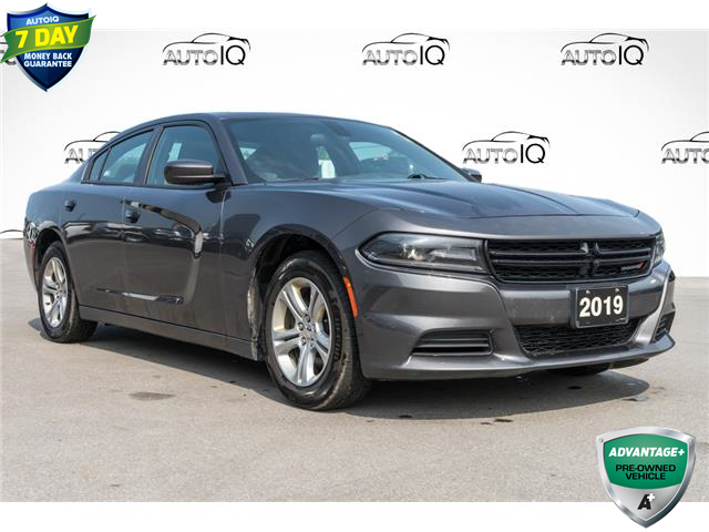 2019 Dodge Charger SXT (Stk: 43988AU) in Innisfil - Image 1 of 29