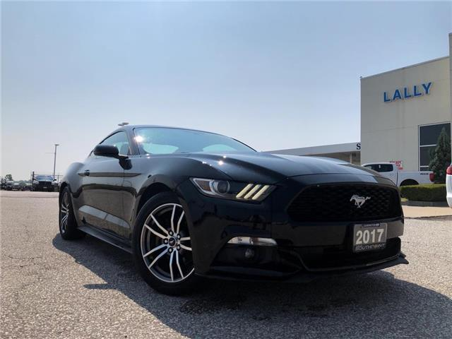 2017 Ford Mustang  (Stk: S6446B) in Leamington - Image 1 of 23