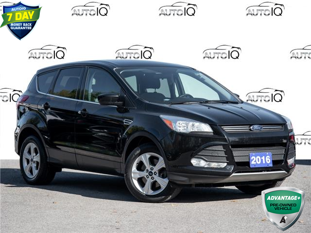 2016 Ford Escape SE (Stk: 20ES259T) in St. Catharines - Image 1 of 24