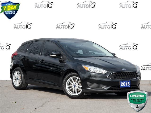 2016 Ford Focus SE (Stk: EL737) in St. Catharines - Image 1 of 23
