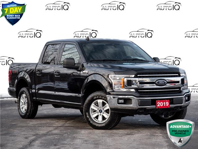2019 Ford F-150 XLT (Stk: 80-72) in St. Catharines - Image 1 of 26