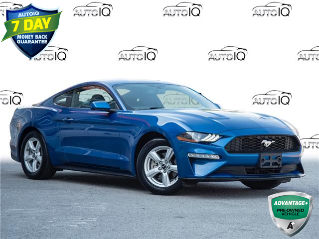2018 Ford Mustang EcoBoost (Stk: 80-228) in St. Catharines - Image 1 of 25
