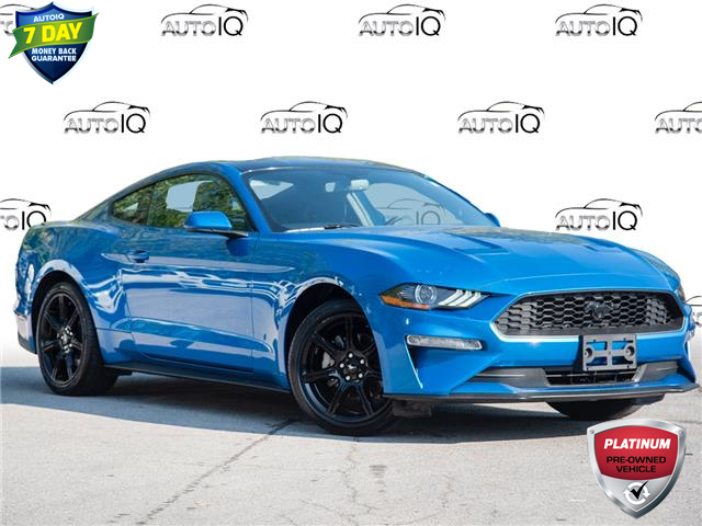 2019 Ford Mustang EcoBoost (Stk: 603147) in St. Catharines - Image 1 of 26