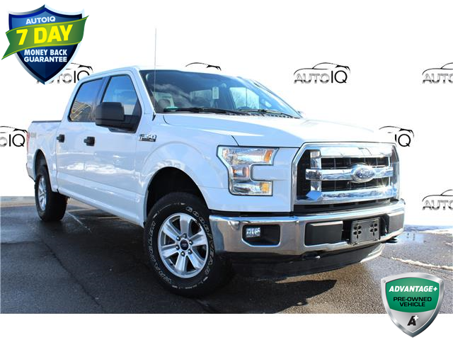 2016 Ford F-150 XLT (Stk: 1HL386) in Hamilton - Image 1 of 19