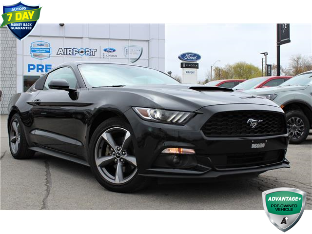 2017 Ford Mustang V6 (Stk: 00H1263) in Hamilton - Image 1 of 19