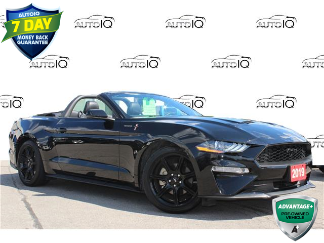 2019 Ford Mustang EcoBoost Premium (Stk: 00H1381) in Hamilton - Image 1 of 25