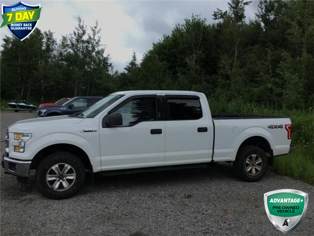 2016 Ford F-150 XLT (Stk: 94181) in Sault Ste. Marie - Image 1 of 8
