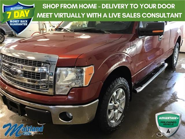 2014 Ford F-150 XLT (Stk: FB4322) in Sault Ste. Marie - Image 1 of 30