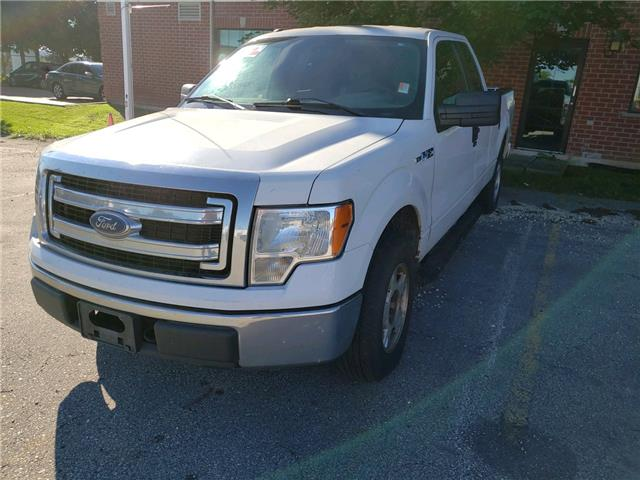 2013 Ford F-150 XL White