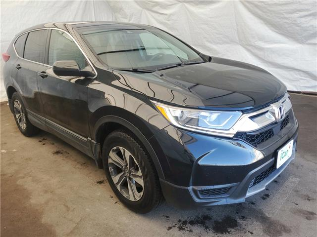 2017 Honda CR-V LX (Stk: IU2002) in Thunder Bay - Image 1 of 11