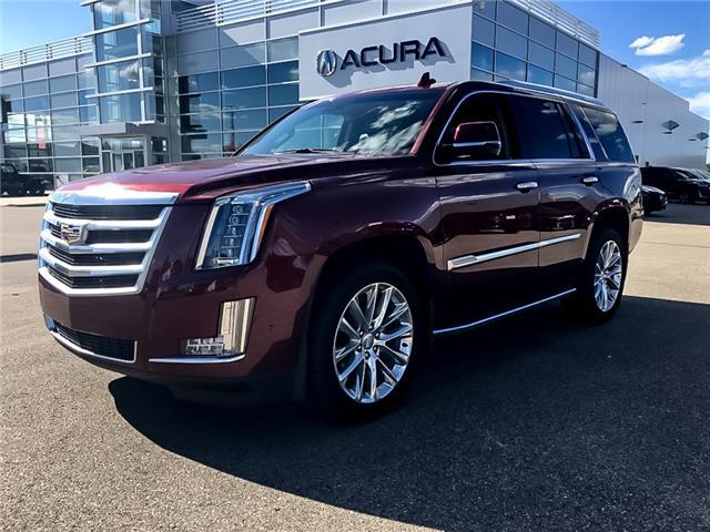 2019 Cadillac Escalade Luxury 1GYS4BKJ9KR229803 A1233 in Saskatoon