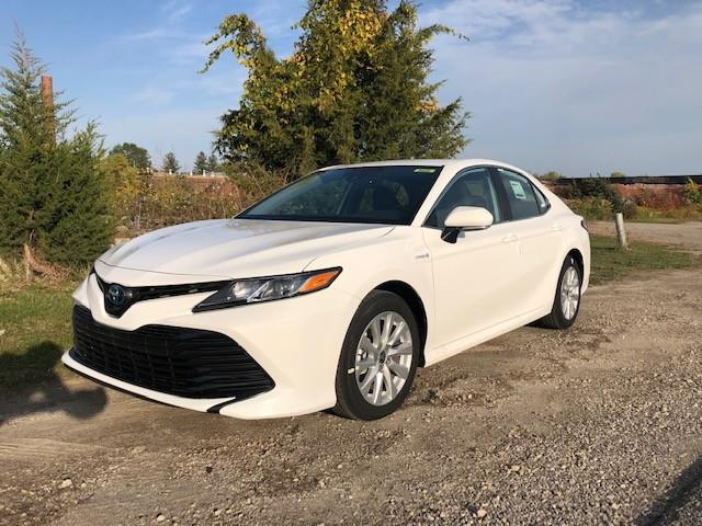 2020 Toyota Camry Hybrid LE (Stk: 42435) in Chatham - Image 1 of 2
