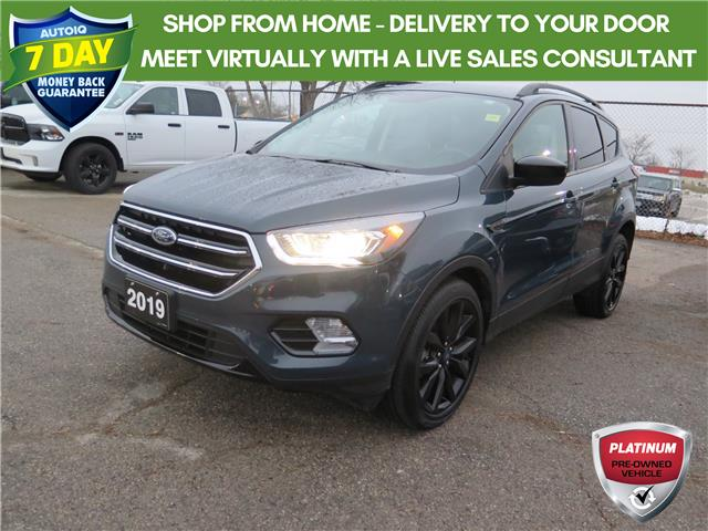 2019 Ford Escape SE (Stk: 96316) in St. Thomas - Image 1 of 19