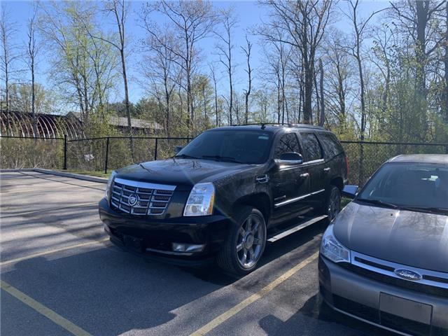 2011 Cadillac Escalade Base (Stk: P4069A) in Welland - Image 1 of 4