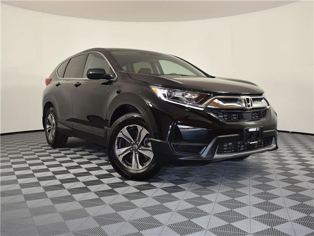 2019 Honda CR-V LX (Stk: 21H113A) in Chilliwack - Image 1 of 28