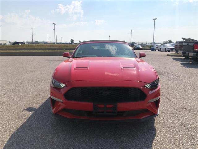 2020 Ford Mustang EcoBoost (Stk: MU26610) in Leamington - Image 1 of 9