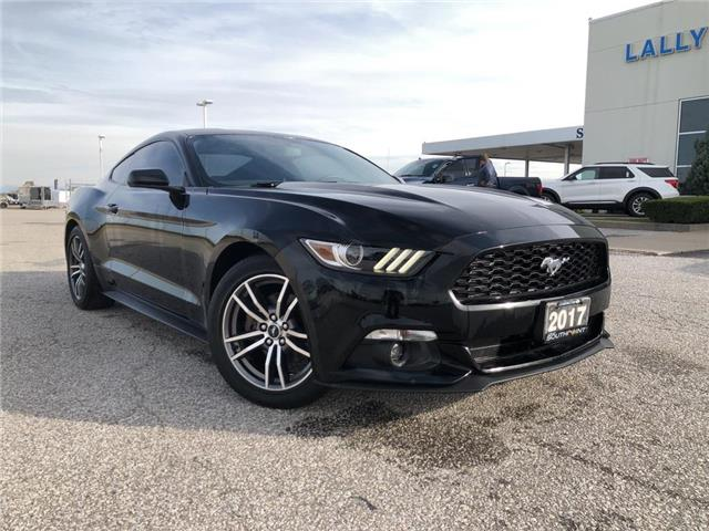2017 Ford Mustang EcoBoost (Stk: S26291A) in Leamington - Image 1 of 23