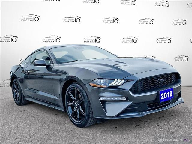 2019 Ford Mustang EcoBoost (Stk: 7194A) in St. Thomas - Image 1 of 29