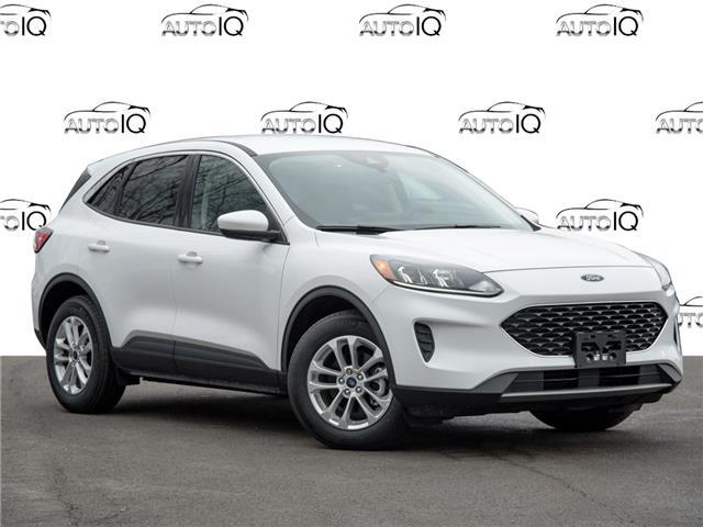 2020 Ford Escape SE White