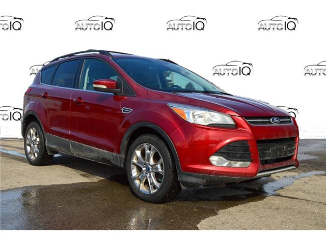 2013 Ford Escape SEL (Stk: L313A) in Grimsby - Image 1 of 15