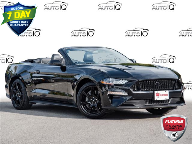 2019 Ford Mustang GT Premium (Stk: 4053A) in Welland - Image 1 of 24