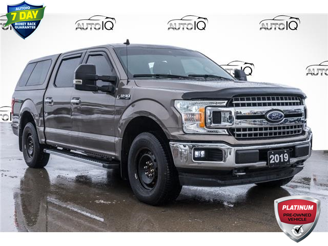 2019 Ford F-150 XLT (Stk: 44334BU) in Innisfil - Image 1 of 27