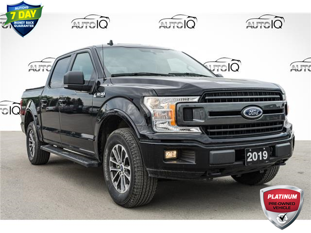 2019 Ford F-150 XLT (Stk: 44859AUX) in Innisfil - Image 1 of 27