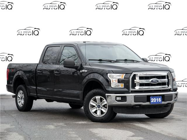2016 Ford F-150 XLT (Stk: 40-50) in St. Catharines - Image 1 of 22