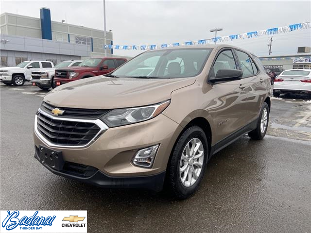 2018 Chevrolet Equinox LS (Stk: 8793) in Thunder Bay - Image 1 of 20