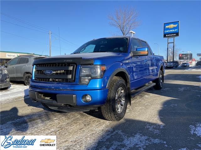 2013 Ford F-150  (Stk: M129A) in Thunder Bay - Image 1 of 20