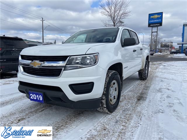 2019 Chevrolet Colorado WT (Stk: 8796) in Thunder Bay - Image 1 of 21
