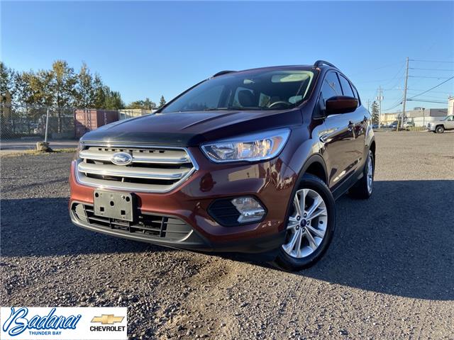 2018 Ford Escape SE 1FMCU0GD2JUB56797 M428A in Thunder Bay