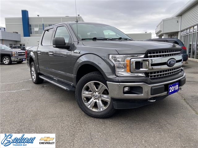 2018 Ford F-150  (Stk: 8841) in Thunder Bay - Image 1 of 20