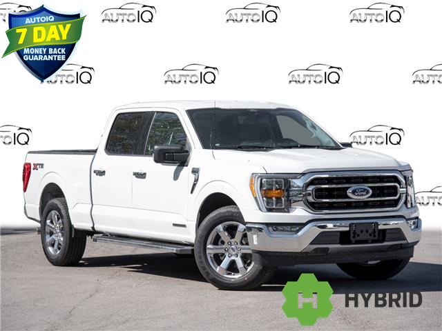 2021 Ford F-150 XLT (Stk: 21F1478) in St. Catharines - Image 1 of 25
