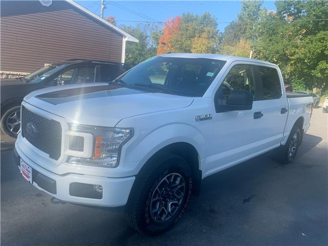 2019 Ford F-150 XL (Stk: 212047C) in Fredericton - Image 1 of 10
