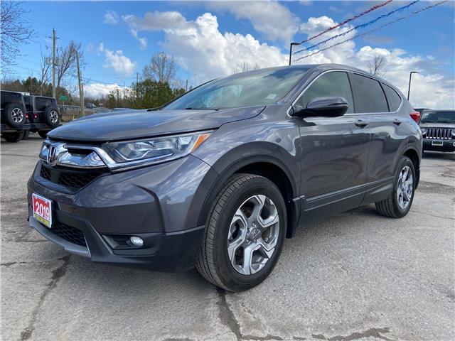 2019 Honda CR-V EX (Stk: M923040) in Manotick - Image 1 of 20