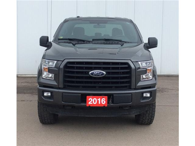 2016 Ford F-150 XLT (Stk: T18243A) in Sault Ste. Marie - Image 2 of 10