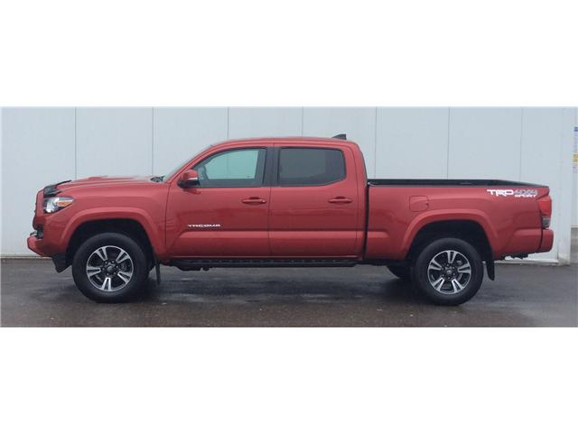 2017 Toyota Tacoma SR5 (Stk: T18250A) in Sault Ste. Marie - Image 3 of 10