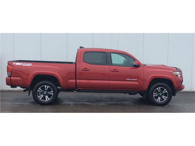 2017 Toyota Tacoma SR5 (Stk: T18250A) in Sault Ste. Marie - Image 5 of 10