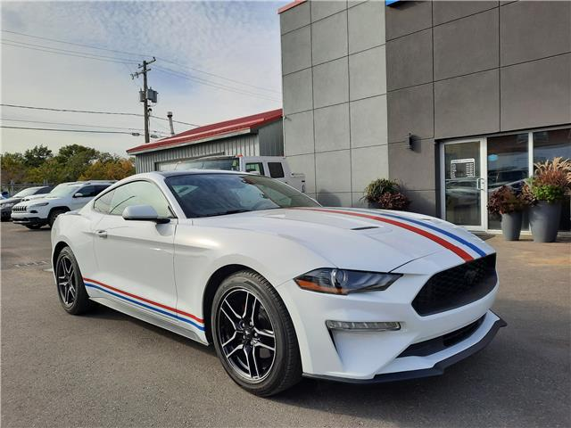 2019 Ford Mustang  (Stk: 15159) in Regina - Image 1 of 21