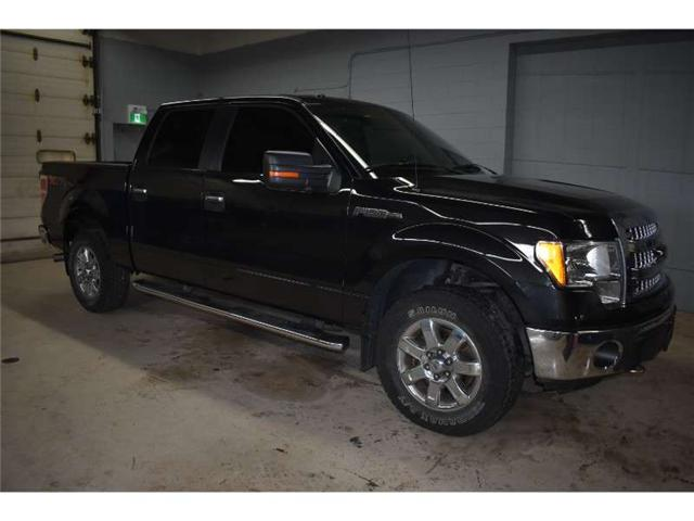 2013 Ford F-150 XLT 4x4 CREW CAB - BACKUP CAM * SAT RADIO READY  (Stk: B2711) in Napanee - Image 2 of 29