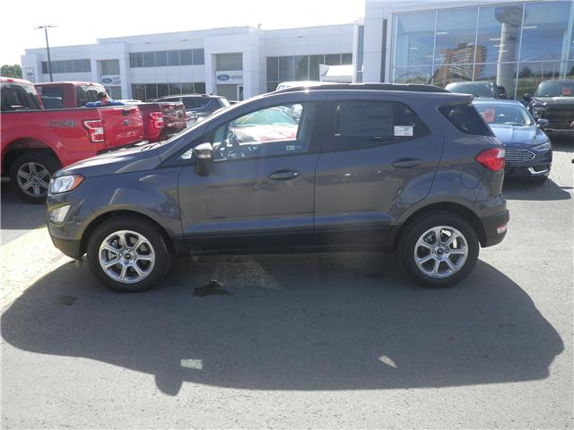 2018 Ford EcoSport SE (Stk: 1819010) in Ottawa - Image 2 of 12