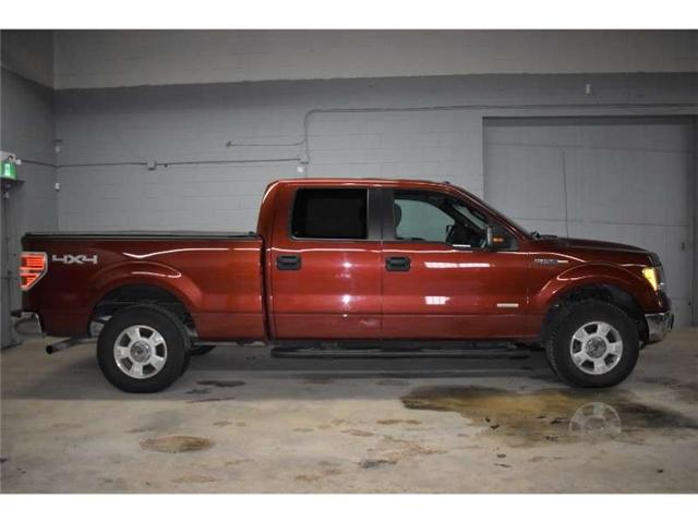 2014 Ford F-150 XLT 4X4- SAT RADIO READY * REMOTE START * CRUISE (Stk: B2935) in Kingston - Image 1 of 30