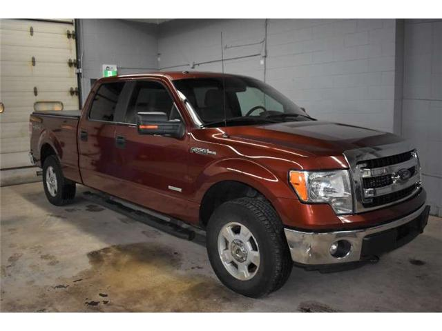 2014 Ford F-150 XLT 4X4- SAT RADIO READY * REMOTE START * CRUISE (Stk: B2935) in Kingston - Image 2 of 30