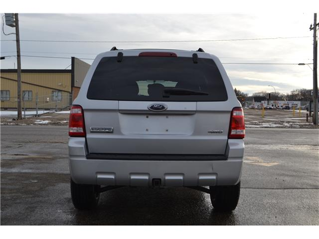 2008 Ford Escape XLT (Stk: CDP2533) in Regina - Image 7 of 13