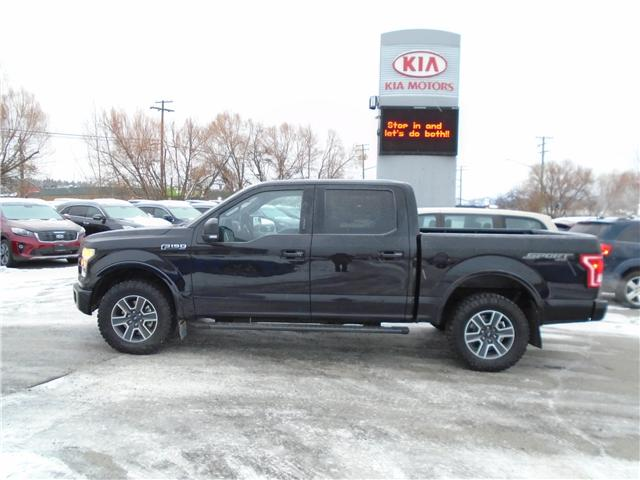 2016 Ford F-150 XLT (Stk: L1287) in Cranbrook - Image 2 of 16