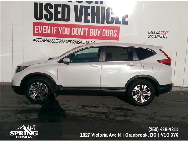 2019 Honda CR-V LX (Stk: H03011) in North Cranbrook - Image 2 of 6