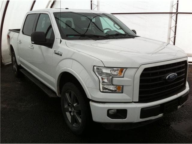 2015 Ford F-150 XLT (Stk: 190013A) in Ottawa - Image 1 of 20