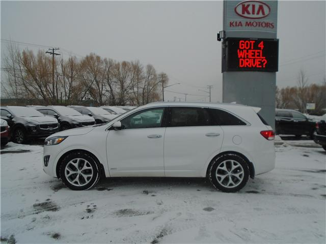 2017 Kia Sorento 2.0L SX (Stk: 7SO8013) in Cranbrook - Image 2 of 15